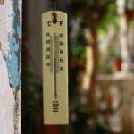 メダカの水温を下げる方法!温度をうまく合わせる3コツ