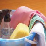 ベタの水槽を掃除しよう!油膜やコケなど汚れ別の対処法まとめ