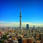 アクアリウムのショップは東京!おすすめ5店舗を厳選紹介