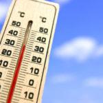 ベタに適した水温は?夏&冬の温度管理方法を解説!